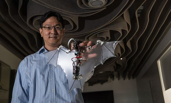 American engineers managed to create a robot-bat