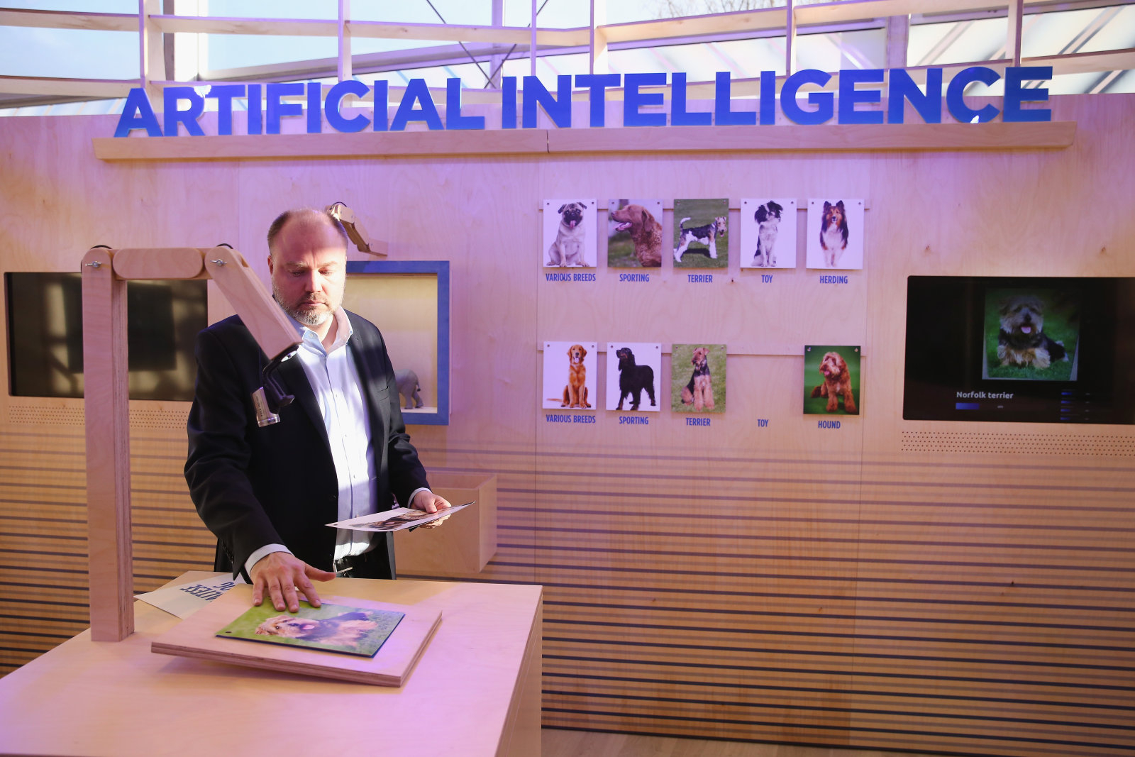 Artificial intelligence will be taught to speed read