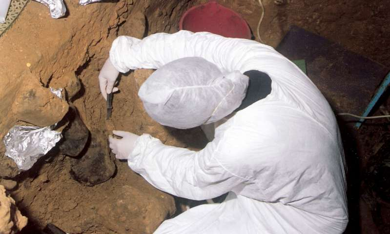Archaeologists were able to detect DNA of our ancestors in sedimentary rocks