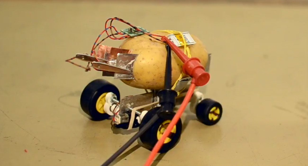 #video | Resident of Poland has built a self-driving robot of potatoes