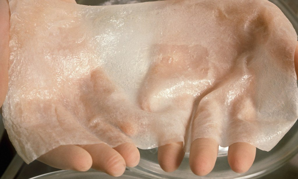 Scientists have developed artificial skin with