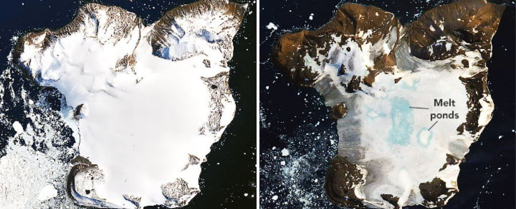 How much snow has melted due to record high temperatures in Antarctica?