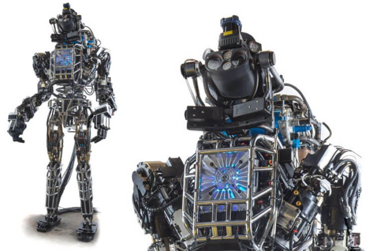 How to construct the most sophisticated robot on Earth?