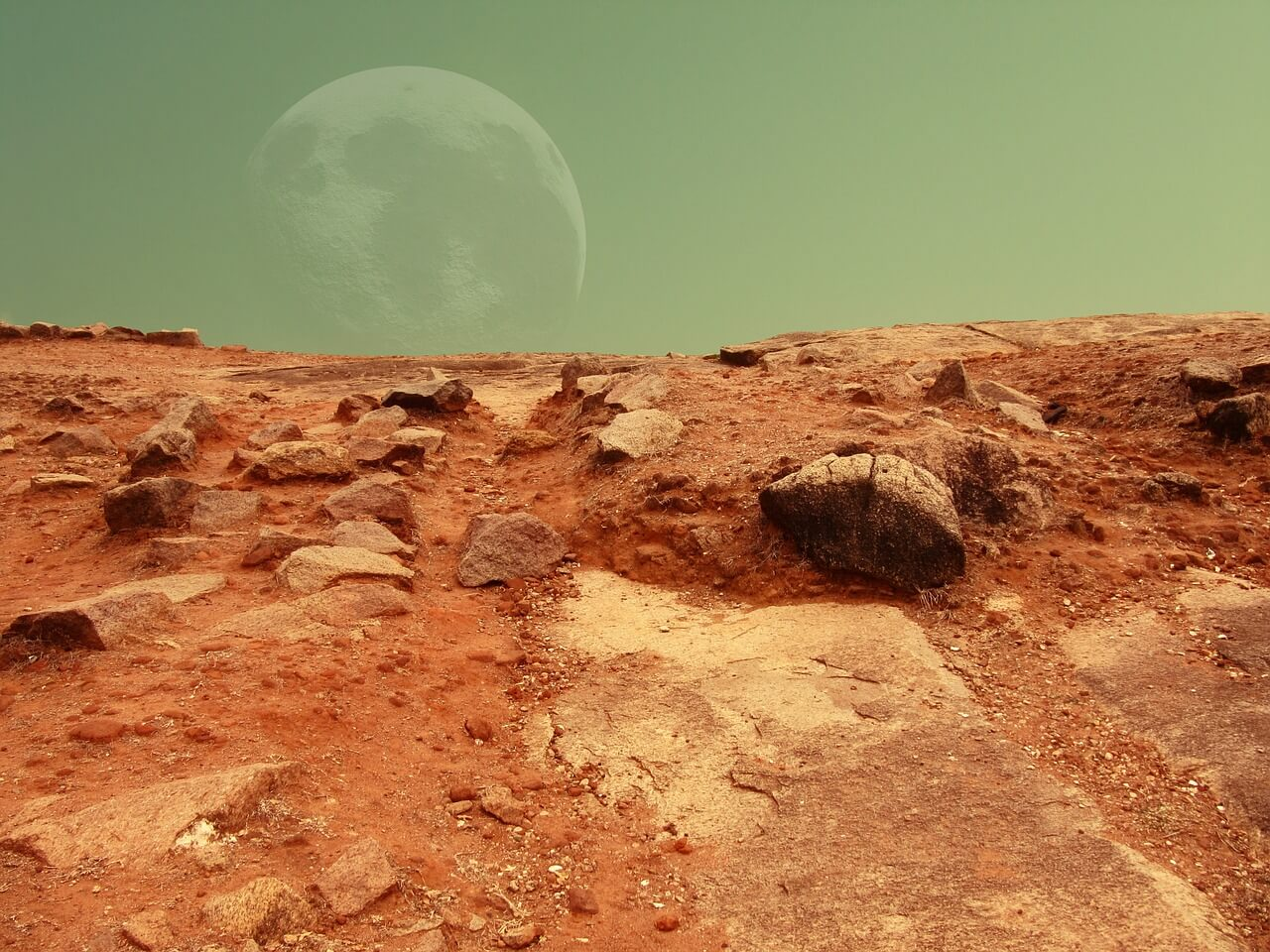 What will be the shelter for the first Martian colonists?